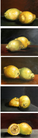 Citrons 2009